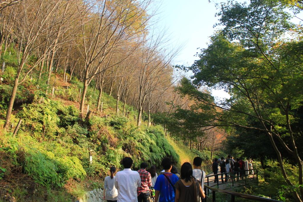 jalan mengelilingi Kiyomizu-dera