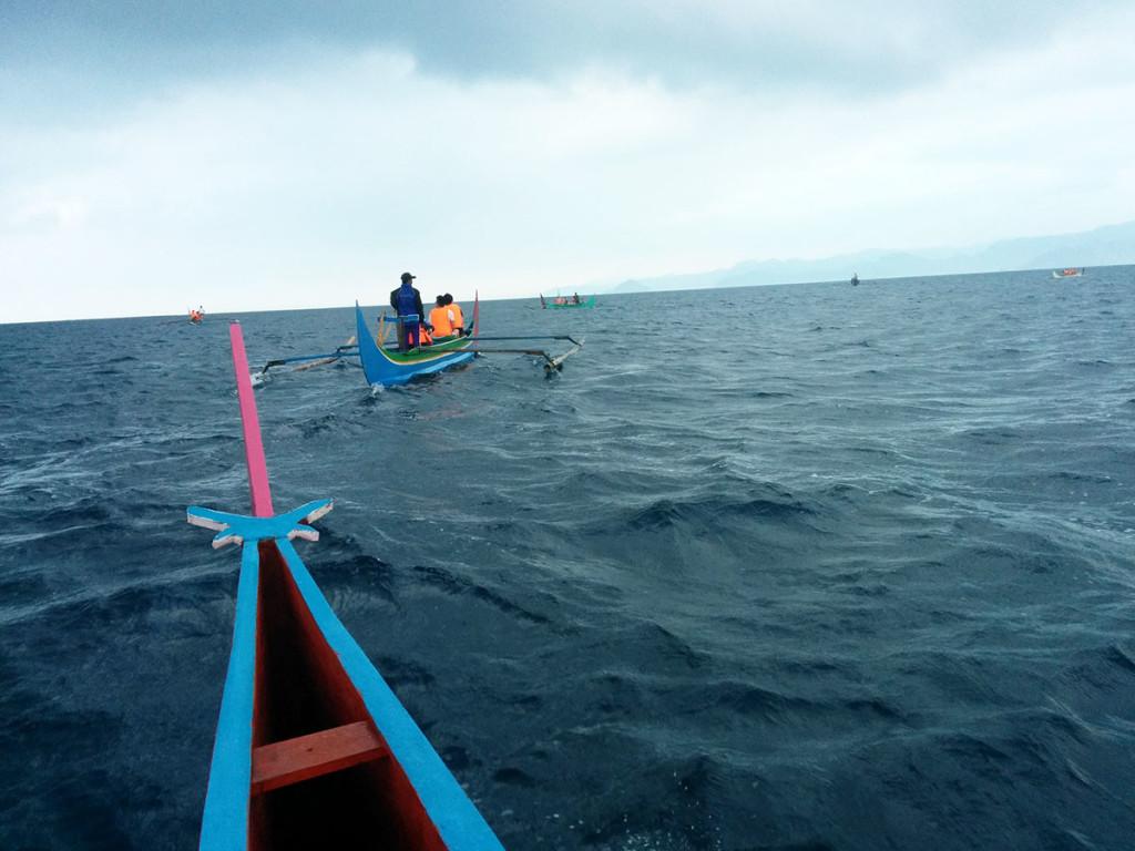 Mencari lumba-lumba di teluk kiluan