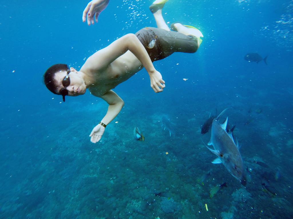 spot snorkeling ceningan wall nusa lembongan