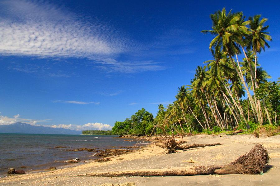 Pengen ke sini, mau nyanyi Rayuan Pulau Kelapa