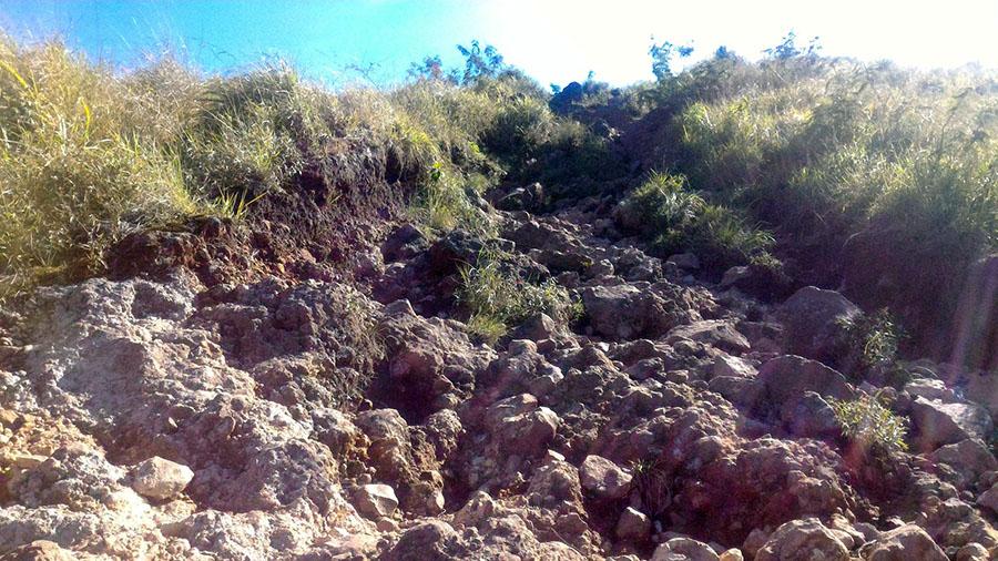 Jalur Menuju Puncak gunung penanggungan